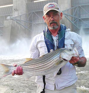 Striper Fishing in Nashville TN