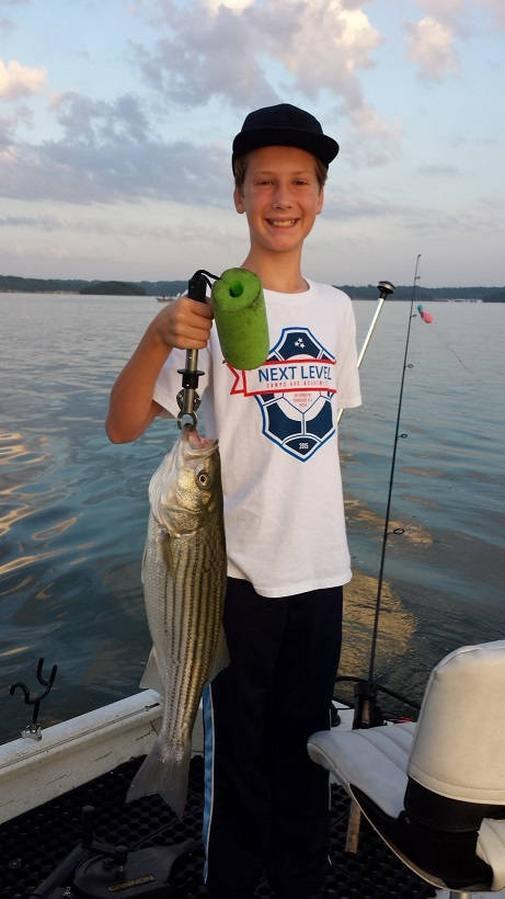 Jacob's striper